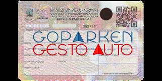 Gestoría Vehicular Morelos